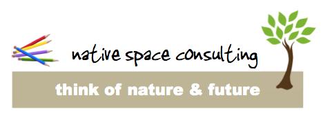 株式会社ネイティブスペース